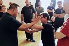 Sifu Paris - partner training 2018